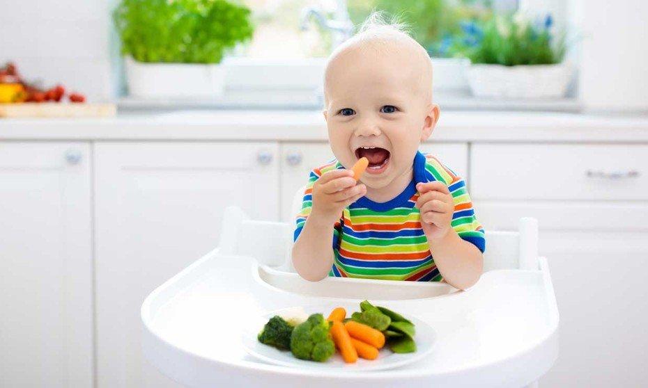 baby led weanin nutricionconq